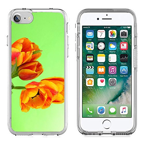 MSD Apple iPhone 7/iPhone 8 Clear case Soft TPU Rubber Silicone Bumper Snap Cases iPhone7/8 IMAGE ID 19763807 Beautiful orange tulips on color - Tulip Colours