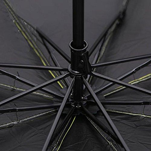 HULKAY Upgrade Hottest Sell Lady Princess Magic Flowers Dome Parasol Sun Rain Folding Umbrella(D)