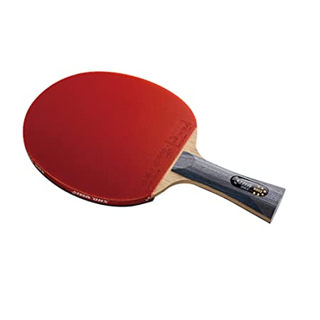 DHS Ping Pong Paddle 6002, Table Tennis Racket – Shakehand with LANDSON Rubber Protector