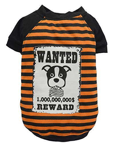 Doggy Dolly Authentic Pet Dog Clothes Trendy Reward Wanted Orange T-Shirt (M) ()