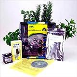 Indoor Herbal Tea Garden Kit - Grow Herb Tea Herbs- Chamomile, Catnip, More