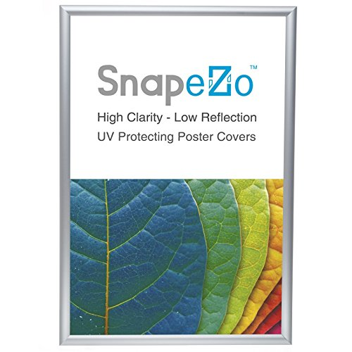 "SnapeZo Poster Frame 18x24 Inch, Silver 1"" Aluminum Profile,"