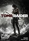 Software : Tomb Raider [Download]