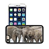 Luxlady Premium Apple iPhone 6 Plus iPhone 6S Plus Aluminum Backplate Bumper Snap Case IMAGE ID: 29939617 Three Asian Elephants Teenagers playing and taking a bath Sri Lanka