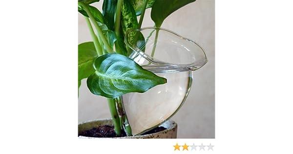 4 Bolas de riego gradual ideal para cuando se va de vacaciones Bolas de riego Bola de sed Plantas GFGR: Amazon.es: Jardín