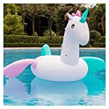 Colorful Horse Inflatable Floating Row - Water Adult Children's Toys