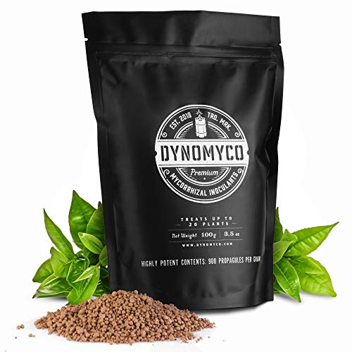 Mycorrhizal Inoculant by DYNOMYCO - High Performing Strains - Concentrated Formula - Improves Nutrient Uptake - Increases Plant Yields Enhances Resilience to Stress Saves Fertilizer (100 g / 3.5 Oz)