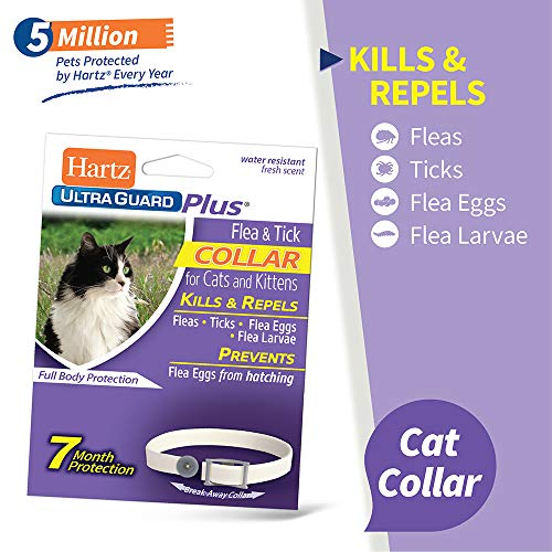 Bestselling Cat Flea Collars