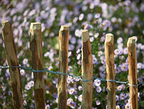 /· Slat fence chestnut nature rolling fence hazelnut BooGardi Hazelnut fence in 14 sizes /· 50 x 500 cm slatted distance 3-5 cm