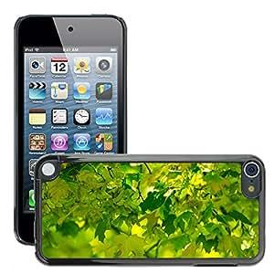 Print Motif Coque de protection Case Cover // M00155496 Hoja sale del fondo de la hierba de // Apple ipod Touch 5 5G 5th 6 6G 6th
