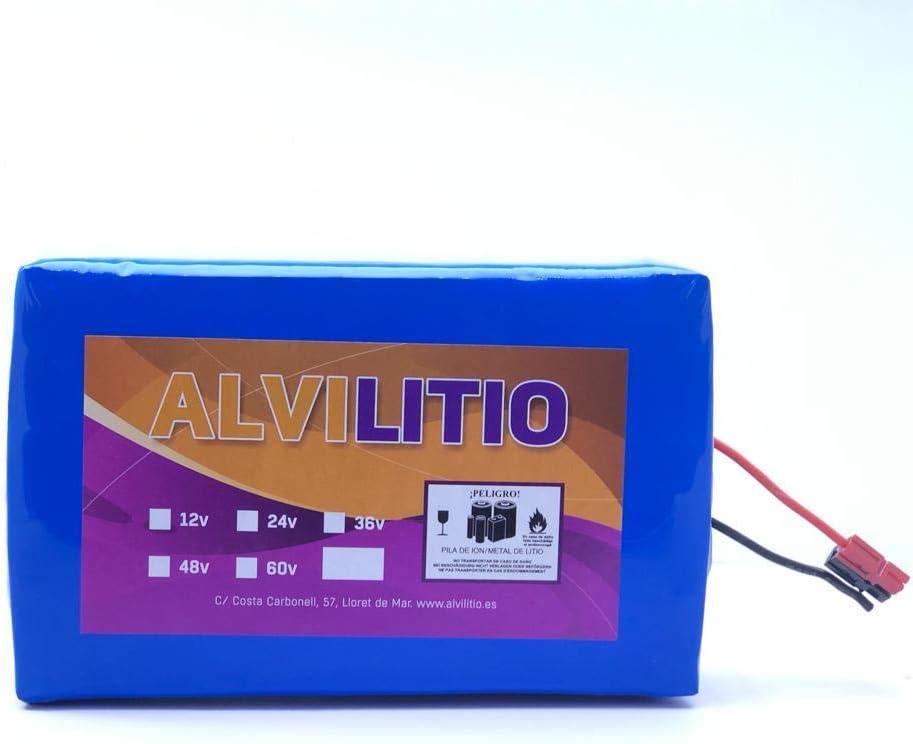 ALVILITIO Bateria de Litio Recargable 24V 9AH/12AH/15AH/18AH/21/AH/24AH/27AH/30AH Alta Potencia (24V 24AH)