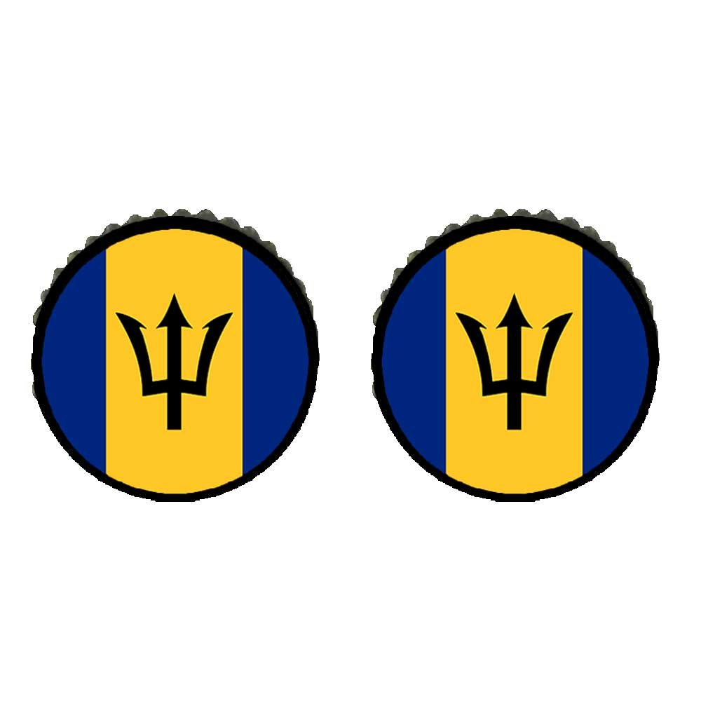 GiftJewelryShop Bronze Retro Style Barbados flag Photo Stud Earrings 10mm Diameter
