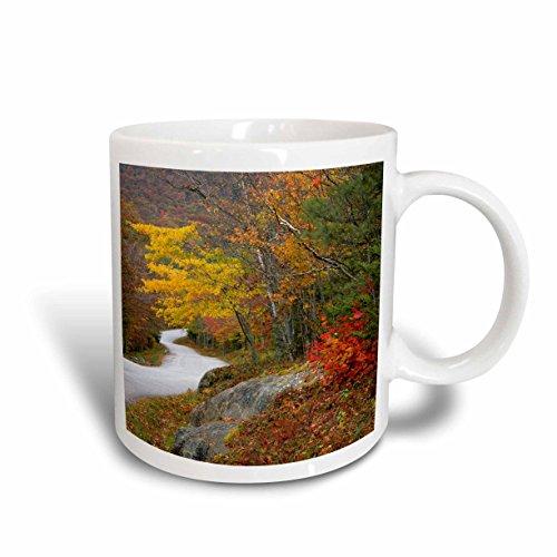 3dRose Maine Road Through Camden Hills State Park US20 BJA0003 Jayne's Gallery Ceramic Mug, 11-Ounce