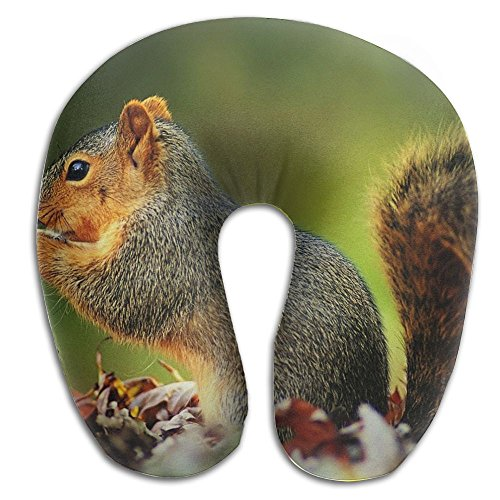 - Playful Squirrel Eat Print U Shaped Pillow Memory Foam Neck Pillow For Travel And Relief Neck Pain Fashion Super Soft Cervical Pillows With Resilient Material Relex Pollow