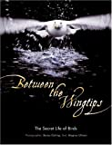 Between the Wingtips, Brutus Ostling and Magnus Ullman, 0061136859