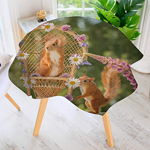 Squirrel Flowers Proof (PRUNUS Hand Screen Printed Tablecloth-red Squirrel Stand on a Chair with Flowers with Another Squirrel Beside Modern Printed Spill Proof Cloth Round Tablecloths 67