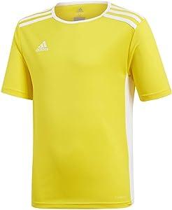 adidas Entrada 18 Jersey Shirt