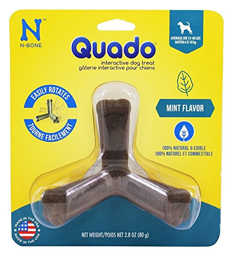 Image of N-Bone Nbone 115004 Quado in Mint-Mini, Large
