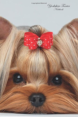 Yorkshire Terrier Notebook, A5, 120 Pages. Your Academic: Diary, Journal, To Do List, Brainstorm, Ideas, Thoughts, Memories & More PDF