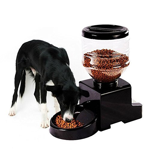 Petlou Automatic Pet Feeder with Anti-Jam Dispensing System