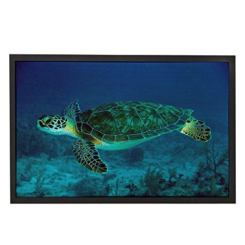 Freedom Sea Turtle Door Mat for Home / Bathroom / Kitchen Carpet Doormat