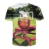 CHIC Women Harajuku Hip Hop Mr.T Ice-T 3D Print Casual T Shirts Swag Tops (XXL)