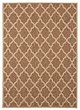 Balta Rugs 31145765.160225.1 Madeira Brown Indoor/Outdoor Area Rug, 5′ x 8′ For Sale