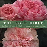 Image for The Rose Bible