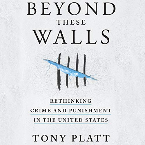 Pdf Law Beyond These Walls: Rethinking Crime and Punishment in the United States