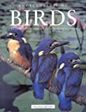 Encyclopedia of Birds, Second Edition (Natural World)