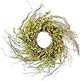 Fantastic Craft Berries Grapevine Wreath, 28-Inch, Green
