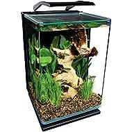 MarineLand ML90609 Portrait Aquarium Kit, 5-Gallon w/Hidden Filter