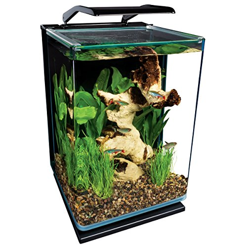Marineland ML90609 Portrait Aquarium Kit, 5-Gallon w/ Hidden Filter (Fish Tank)
