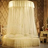 Dome Ceiling Ceiling Mosquito Nets/Fashion Landing Nets/Simple Single Mosquito Net/Exquisite Double Home Mosquito Nets-A C