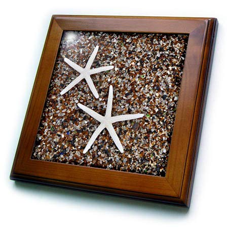 3dRose Danita Delimont - Seashells - USA, Hawaii, Kauai. Starfish Skeletons on Glass Beach. - 8x8 Framed Tile (ft_314788_1)