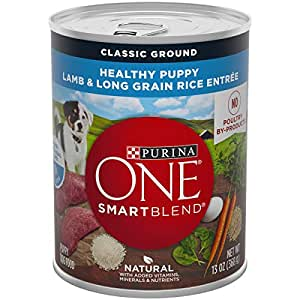 Amazon.com: Purina ONE Natural Pate Wet Puppy Food