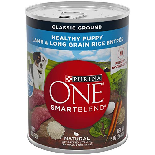 Purina ONE Natural Pate Wet Puppy Food; SmartBlend Healthy Puppy Lamb & Long Grain Rice Entree - (12) 13 oz. Cans (Best Wet Dog Food For Puppies)