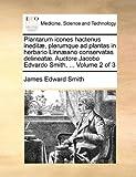 Plantarum Icones Hactenus Ineditæ, Plerumque Ad Plantas in Herbario Linnæano Conservatas Delineatæ Auctore Jacobo Edvardo Smith, James Edward Smith, 1170121470