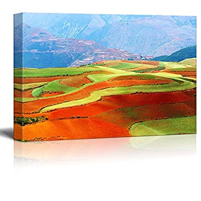 Canvas Prints Wall Art - Beautiful Fields Landscapes in Yunnan Province, Southwest of China - 12