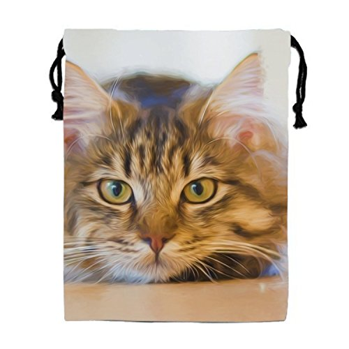 Animal Artistic Cat Face Oil Painting Painting Pet Drawstring Bags Waterproof Party Favors Pouch Tote Bag For Women (Draw A Cat Face For Halloween)