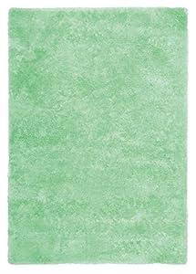 Dolphin 500 Mint Green Shaggy Rug Soft Feeling Cotton Back 60 Cm X 110 Cm
