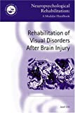 Rehabilitation of Visual Deficits after Brain Injury, Zihl, Josef, 0863778984