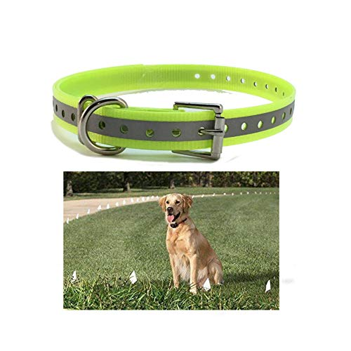 Sparky Pet Co Dogtra Strap 3/4