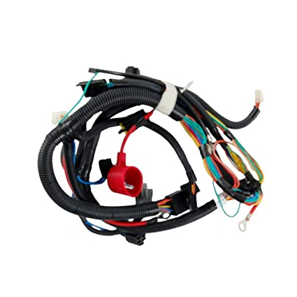 Amazon.com: MTD Sustitución Parte # 925 – 04847 C Harn: Wire ...