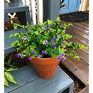 TEMCHY Artificial Fake Flowers,UV Resistant Faux Greenery Foliage Plants Shrubs for Garden, Wedding, Outside Hanging Planter, Farmhouse Indoor Outdoor Decor 2