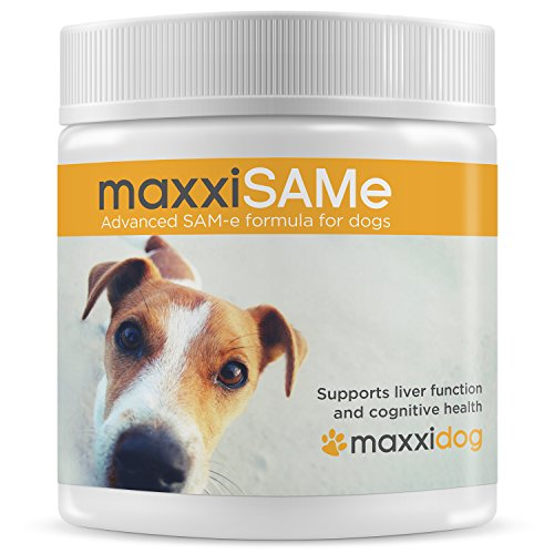 maxxidog - maxxiSAMe - Advanced SAM-e Liver Supplement for Dogs – Hepatic Liver Health - Cognitive dysfunction in Senior Pets – Canine Mood Control – Powder 5.3 oz – Given with Food