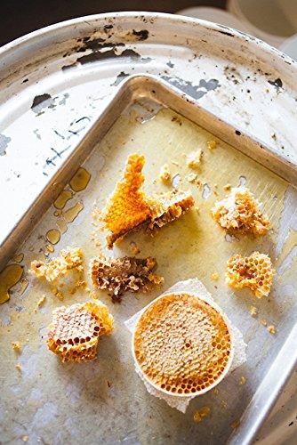Amazon.com : BEE LOCAL Willamette Valley Honey, 8 OZ : Grocery & Gourmet Food
