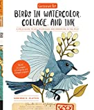 img - for Geninne's Art: Birds in Watercolor, Collage, and Ink: A field guide to art techniques and observing in the wild book / textbook / text book