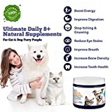 Ultimate Pet! Pet Probiotics with Hip & Joint - Best Reviews Guide