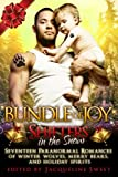 Shifters in the Snow: Bundle of Joy: Seventeen Paranormal Romances of Winter Wol